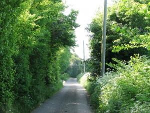 Whiteditch & School Lane 002