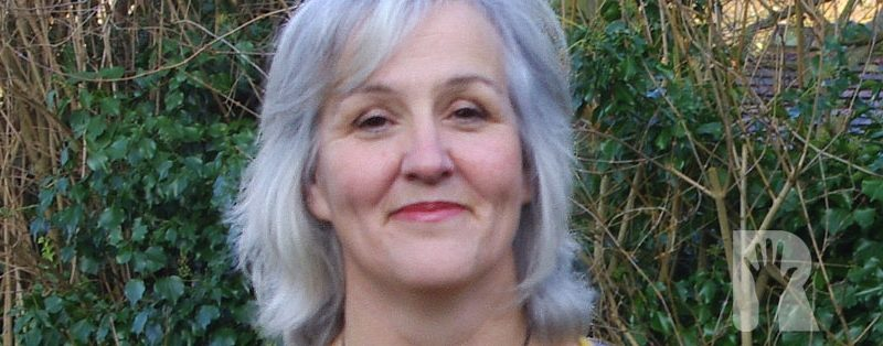 Fetes, fences, flower beds – and finally a voice for our villages in the Local Plan: Update from Petrina Lees